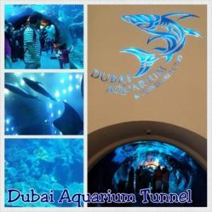 05. dubai aquarium tunnel